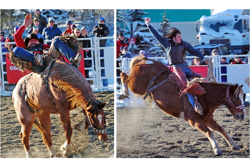 Rodeo Photography